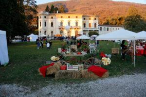 Il parco di Villa dei Cedri si veste di Natale