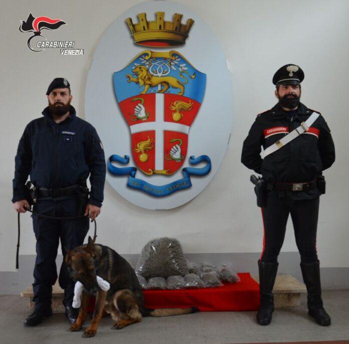 I Carabinieri di Mestre e La Polizia Locale di Venezia