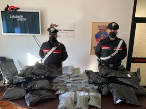 La marijuana sequestrata dai Carabinieri