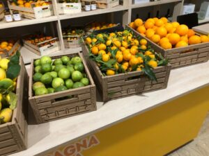 arance, limoni e clementine