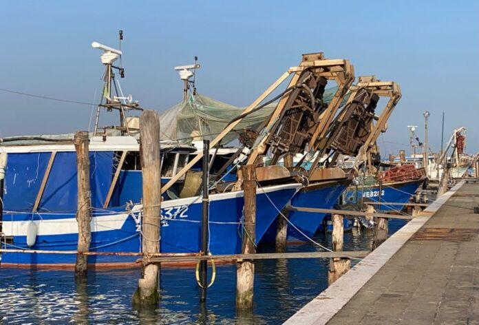 Imbarcazioni di vongolari